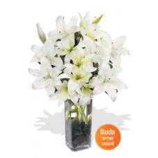 7 Oriental Lily Bouquet