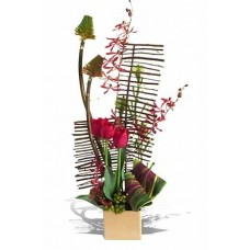 Exotic Designer Arrangement